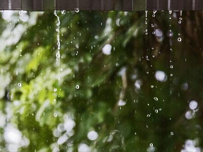 Jingqing's Sound of Rain Drops